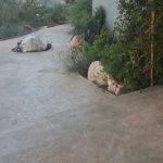 דמוי סלע